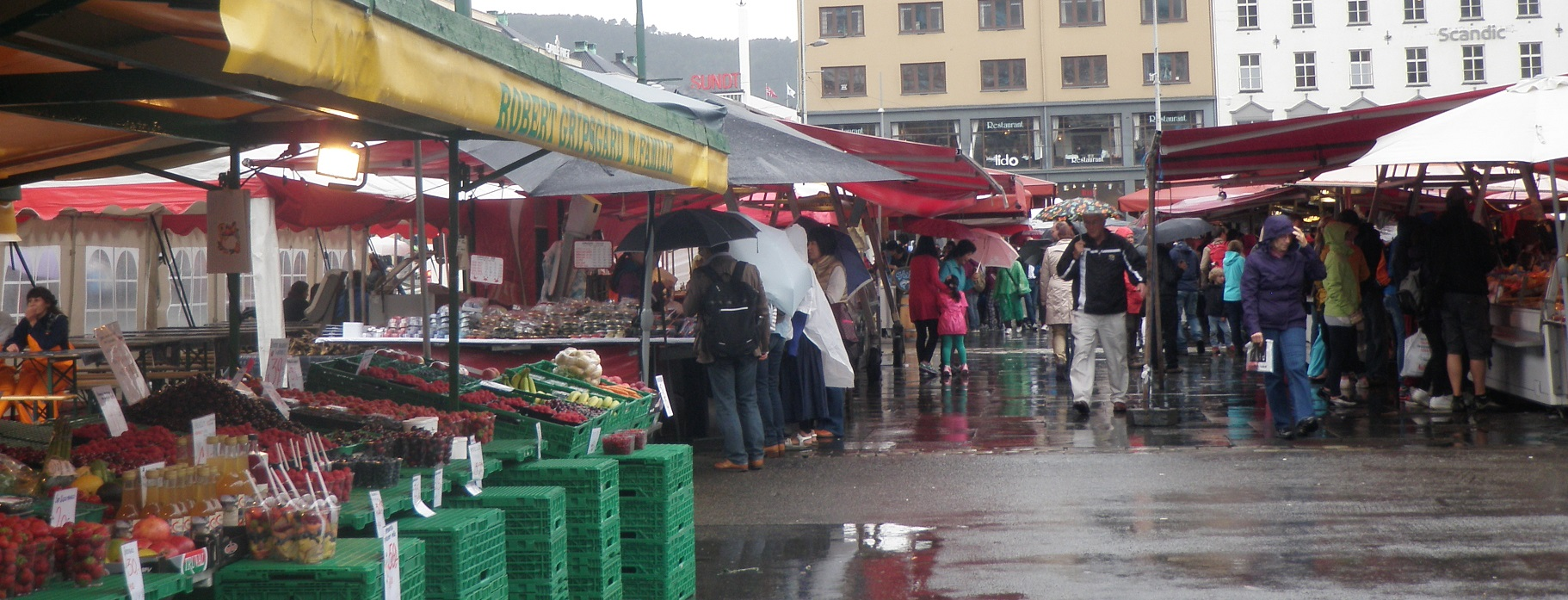 Taste Testing Bergen S Outdoor Fish Market Michelle S